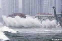 ภาพน่ากลัวจากอิทธิพลพายุไต้ฝุ่นหมุ่ยฟ้า
