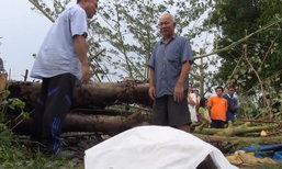 พายุฤดูร้อนพัดต้นไม้ล้ม ทับยายวัย 62 ดับ ตากอดศพสะอื้น