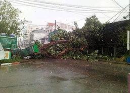 พายุถล่มสุรินทร์ระลอก3ต้นจานล้มทับรถ
