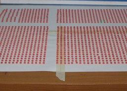 ผบช.ปส.แถลงจับหนุ่มส่งยาบ้า57,000เม็ด