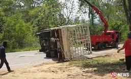 หวิดบึ้ม! รถแก๊ส 100 ถังหักหลบคว่ำ โชเฟอร์เห็นคนนอนขวาง