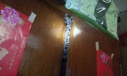 สาวจีนผงะ! กลับห้องมาเจอฝูงผึ้งแห่ทำรังในตู้เสื้อผ้าอื้อ