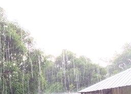 กรมอนามัยเตือนน้ำฝนแรกอาจมีสิ่งปนเปื้อนได้