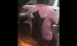 แมวเมืองคอน ซ้อน จยย. ใช้เท้าตะปบหลังเจ้านายแน่น
