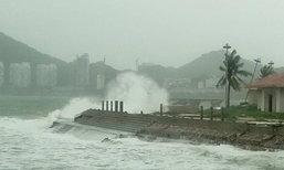 พายุไต้ฝุ่นซาเระกา ถล่มเกาะไหหลำ ต้นไทรอายุกว่าร้อยปีหักโค่น