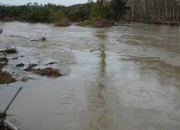 พบ3อ.ริมแม่น้ำตรังท่วมแล้วเฝ้าระวังฝนใหม่