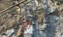 ชุลมุน! กู้ภัยช่วยชายปีนผาท้าทายตัวเอง แต่ลงไม่ได้ นานนับ 3 ชั่วโมง