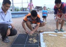 ลพบุรีเปิดศูนย์เรียนรู้คัดเมล็ดพันธุ์ข้าวเปลือก