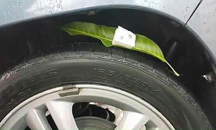 เตือนภัย! เจอใบไม้กลางถนนหลายใบ อย่าขับรถทับ