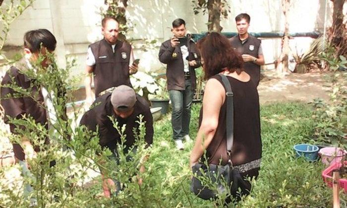 ตำรวจบุกบ้าน ไฮโซสาวใหญ่-นามสกุลดัง เจอปลูกกัญชาอื้อ