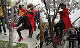 """สุดระอา! มนุษย์ป้าตะเกียกตะกายปีนต้น """"ซากุระ"""" ถ่าย """"เซลฟี่"""""""