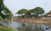 ชาวบ้านในจ.ปทุมธานีแห่จับปลาหลังน้ำแห้ง