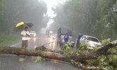 ตราดพายุถล่มหลายจุดรองผู้ว่าฯเร่งช่วย