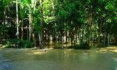 ฝนหนักทำน้ำป่าหลากท่วมบ้านชาวพัทลุงเดือดร้อน
