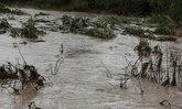 น้ำท่วมกำแพงเพชรกระทบ3,000ครัวเกษตร8หมื่นไร่