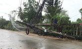 ฝนถล่มเชียงใหม่-เชียงราย ทำเสาไฟฟ้า,ต้นไม้ล้ม