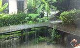 อุตุฯเตือนเหนือกลางตอ.ใต้ยังมีฝนตกหนักมากบางแห่ง