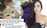 ประทับใจ อั้ม พัชราภา ซุ่มบริจาคช่วยแมวเงียบๆ เป็นกันเองมาก