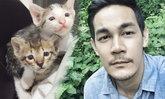 กิก ดนัย หล่อใจดีมีเมตตา ทุบกำแพงร้านช่วยชีวิตลูกแมว