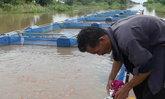 ปทุมฯพบน้ำเน่าเสีย-เกษตรกรหวั่นปลากระชังตาย