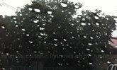 ฝนกระหน่ำสกลนครน้ำท่วม30-40ซม.เตือนระวัง