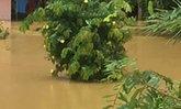 น้ำยังท่วมสุราษฎร์ธานี7อำเภอสูง40ซม.