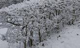 หิมะตกในสเปนครั้งแรกรอบกว่า 100 ปี