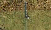 แม่น้ำมูลลดต่อเนื่องจับตา3อ.ในบุรีรัมย์เสี่ยงแล้ง