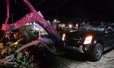 ต้นไม้ใหญ่ล้มทับรถ ว่าที่บ่าวสาวขับรถกลับเตรียมงานแต่ง อาการสาหัส