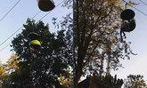 ระทึก! วัยรุ่นสาวมะกัน พลัดตกกระเช้าไฟฟ้ากลางสวนสนุก