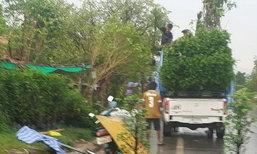 ฝนกระหน่ำปราจีนฯชาวสวนไม้ดอกฯยิ้ม