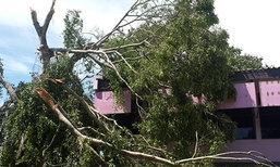 พายุถล่มวิทยาลัยเกษตรฯพังงาเสียหายหนัก