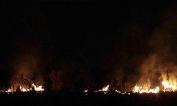 ไฟไหม้ป่าพรุในสงขลาวอด10ไร่-ดับแล้ว