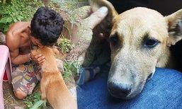 นอภ.รุดช่วย 'ลูกสุนัข' หลังเจ้าของถูกจับคดีค้ายา หวั่นอดอยาก-ขาดคนดูเเล