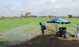 เกษตรกรอ่างทองเร่งทำนาหลังฝนตกต่อเนื่อง