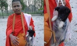ภาพน่ารัก เณรจับลูกหมาใส่ถุงกลับวัด หลังเดินตามบิณฑบาตจนหมดแรง