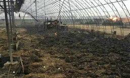 ยับเยิน! ไฟไหม้โรงเลี้ยงเป็ดในจีน เสียหายกว่า 3 ล้านหยวน ซ้ำหิมะตกทับอีก