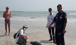 พบซากโลมาหัวบาตรถูกคลื่นซัดมาเกยหาดที่เพชรบุรี