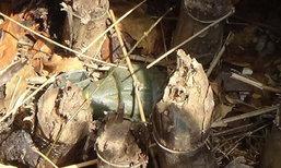 หญิงอ่างทองแทบช๊อคขุดหลุมทำเล้าไก่พบระเบิด
