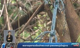 พบซากถุงยางเกลื่อนป่าพระราม9 จุดพบศพหนุ่มใหญ่ตายปริศนา