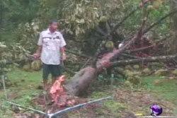 ระทึก! พายุหมุนถล่มทุเรียนปลิวที่เมืองจันท์