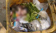 พบศพทารกถูกทิ้งกองขยะลาดกระบัง