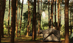 อุทยานแห่งชาติ จ่อขึ้นค่าเข้าชม 33 แห่งทั่วไทย