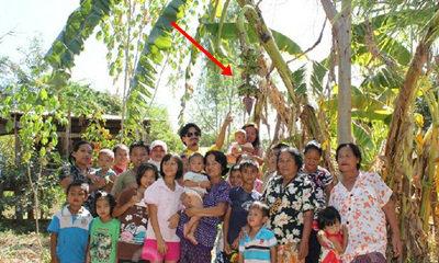 ชาวบ้านแห่ขอหวย!! กล้วยแปลกออกหวีกลางลำต้น