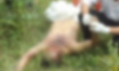หนุ่ม 17 เมาหื่น ฆ่าข่มขืนสาวใหญ่เพิ่งทะเลาะผัว