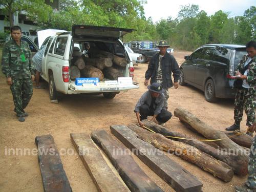 ทหารอุบลฯจับไม้พะยูง16ท่อนค่าเกือบล้าน
