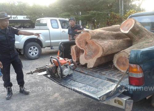 ทหารพราน รวบชาวกัมพูชาลอบตัดไม้ในไทย