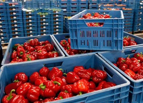 EUระดมทุน125ล.ยูโรช่วยสินค้าเกษตร