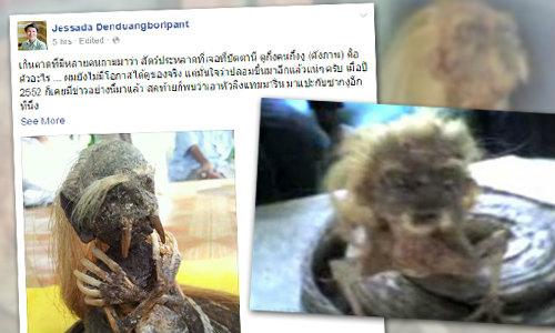 สัตว์ประหลาดงูหัวคน รีเทิร์น! แชร์ภาพอ้างเจอที่ปัตตานี