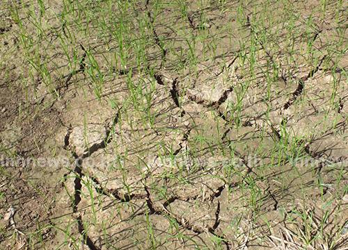 ชาวนาพิมายเดือดร้อน ขณะที่ปริมาณน้ำที่อ่างลดลง